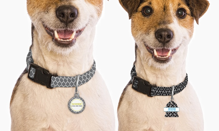 up to 66 off on monogram online dog tag collar groupon goods