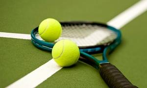 LaTuchie Tennis Center: Five-Week Adult Beginners Program or Five-Class Intermediate Program at LaTuchie Tennis Center in Stow (Up to 56% Off)