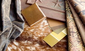 The Interior Solution: $250 for $500 toward wall color consultation/selection at The Interior Solution