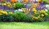 Primex Garden Center - Glenside: $20 for $40 Worth of Plants, Seeds, and Lawn and Gardening Supplies at Primex Garden Center