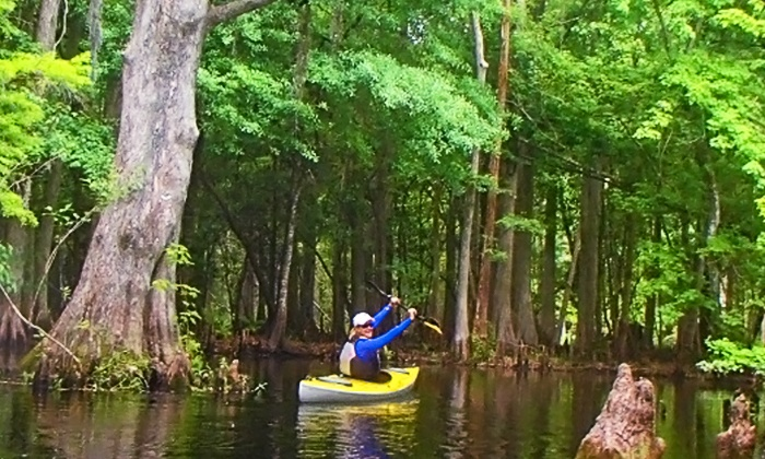 The Paddling Center at Shingle Creek - Kissimmee: Paddleboard, Canoe, or Kayak Rentals from The Paddling Center at Shingle Creek (Up to 55% Off). Four Options.