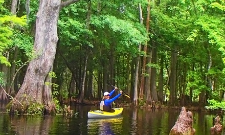 Paddleboard, Canoe, or Kayak Rentals from The Paddling Center at Shingle Creek (Up to 55% Off). Four Options.