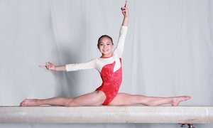American Gymnastics: One Month of Gymnastics, Tumbling/Trampoline, or Dance Classes at American Gymnastics (75% Off). Two Options Available.