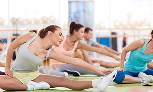 StayFit Health Clubs: 10 or 20 Fitness Classes Including Spin and Zumba at StayFit Health Clubs (Up to 76% Off)