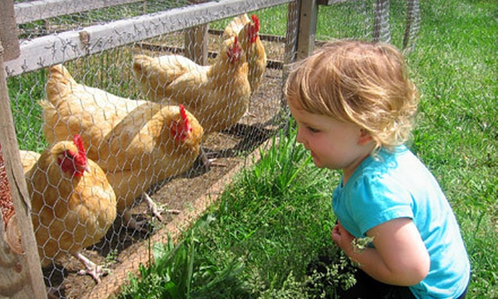 Brier Creek Family Farm - Oak Grove: $119 for a Five-Day Kids' or Teens' Farm Camp at Brier Creek Family Farm in Durham ($240 Value). Six Dates Available.