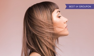 Toni&Guy Academy : Two Blowouts or Haircuts and Conditioning Treatments with Optional Highlights at Toni&Guy Academy (Up to 43% Off)