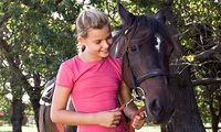Half-Day Pony Experience at Mountjoy Stables (Up to 76% Off)