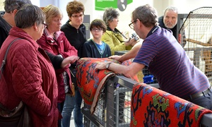 Museum of Carpet: Museum of Carpet: Entry For Two Adults (£5) or a Family (£5.50) (Up to 45% Off)