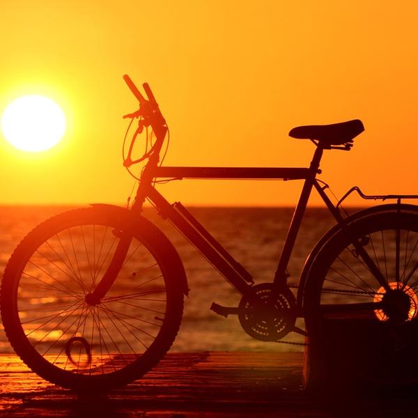 Electric Bike Rental Tour Catalina Groupon