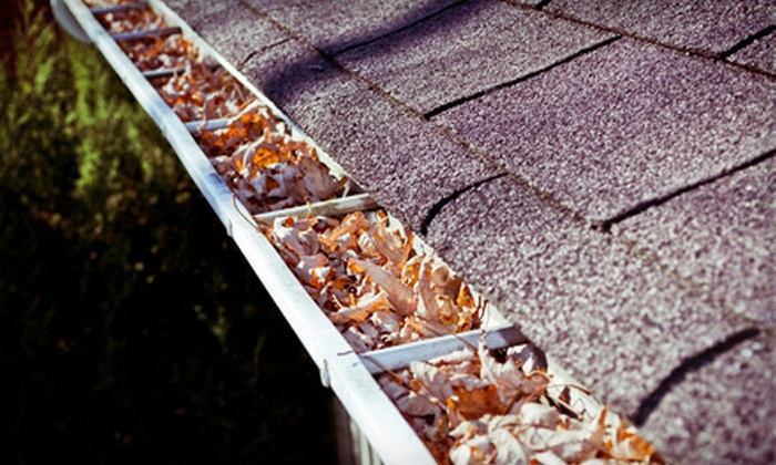RC Remodeling Solutions - Annandale: Gutter Cleaning for a One-Level or Two-Level Home from RC Remodeling Solutions (51% Off)