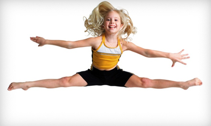 The Trampoline Place - Plainfield: Four 60-Minute Private Trampoline Lessons for One or Two at The Trampoline Place (Up to 52% Off)