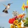 Hummingbird Garden Flower Seed Mat