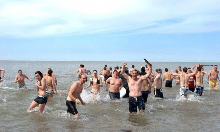 Cleveland Arctic Plunge - Detroit - Shoreway: Cleveland Arctic Plunge Registration for One, Two, or Four (Up to 51% Off)