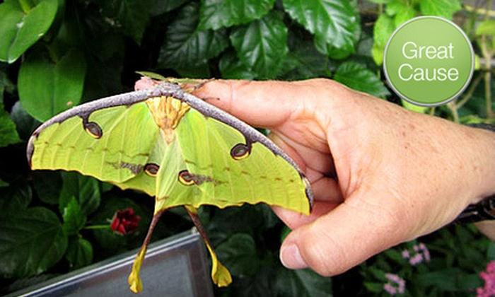 Tucson Botanical Gardens - Midtown: If 40 People Donate $10, Then Tucson Botanical Gardens Can Distribute Butterfly Education Kits to 10 Schools