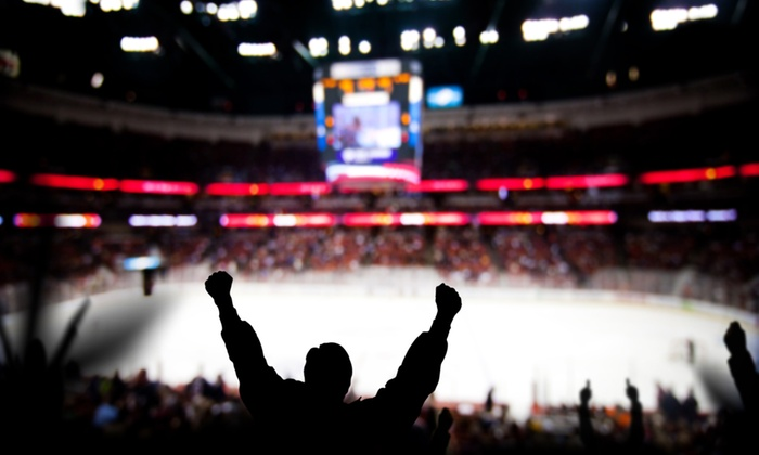 Carolina Hurricanes Hockey Game for Two (February 17–March 30)