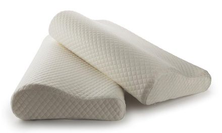 Memory Foam Contour Pillows 2-Pack