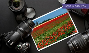 iPhotography: $49 for Lifetime Access to an Online 18-Module On-Demand Course from iPhotography ($849 Value)
