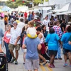 15% Off Bayou City Art Festival Memorial Park 2015