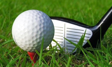 Up to Six 60-Minute Golf Lessons for One or Two at Golf-unLTD (Up to 84% Off)