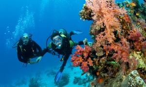 Blu Dive Sub: Corso di immersione a scelta tra Scuba Diver o Review per una o 2 persone con Blu Dive Sub (sconto fino a 87%)