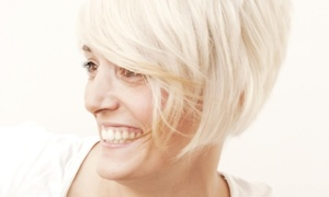 New Rose Salon: A Women's Haircut with Shampoo and Style from New Rose Salon (56% Off)