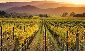 Napa Valley Wine Country Tours: $89 for a Tour of Muir Wood or Wine Country for One at Napa Valley Wine Country Tours ($110 Value)