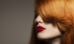 Cashel Hair Salon: Haircut with Deep Condition, Partial Highlights, or Root Touch-Up at Cashel Hair Salon (Up to 55% Off)