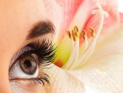 Lash Natural: Full Set of Eyelash Extensions at Lash Natural (50% Off)