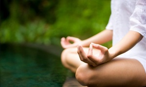 ThetaHealingNYC: 45-Minute Meditation Session from ThetaHealing NYC (50% Off)