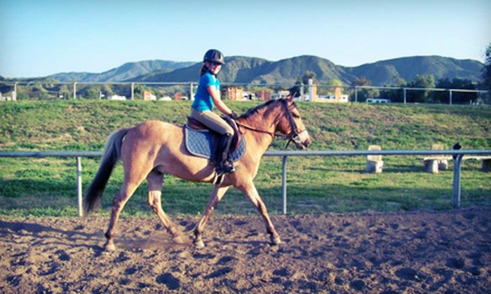 Breezeway Farms - Temecula: One, Three, or Five 60-Minute Horseback-Riding Lessons at Breezeway Farms (Up to 60% Off)