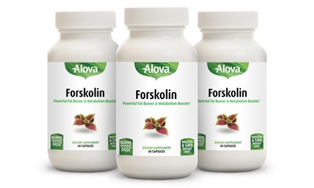 Buy 2 Get 1 Free: Alova Forskolin Dietary Supplement