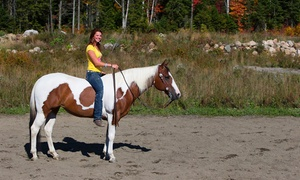 Equi-Cardio: Private or Group Horseback Riding Lessons at Torima Farm (Up to 54% Off)
