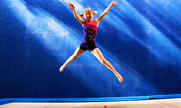 Emerald City Trapeze Arts - Industrial District East: $49 for Three Pole-Dancing or Euro Trampoline Classes at Emerald City Trapeze Arts ($75 Value)