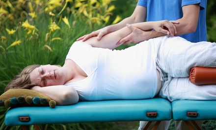 A 90-Minute Prenatal Massage at Mobile Massage By Tish (30% Off)