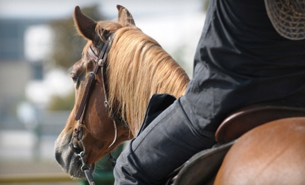 2 Private Riding Lessons (an $80 value) - The Phoenix Equestrian Centre in New Richmond