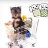 Plaid & Stripe - Wayland: $25 for $50 Worth of Treats, Toys, and Pet-Related Apparel at Plaid & Stripe
