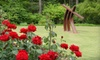 Smith-Gilbert Gardens - Stilesboro Cove: Two or Four Adult Gardening Classes at Smith-Gilbert Gardens in Kennesaw (Up to 58% Off)