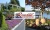 Rosedale Gardens - Gig Harbor Peninsula: $25 for $50 Toward Regular-Priced Shrubs, Trees, Statues, and Garden Art at Rosedale Gardens