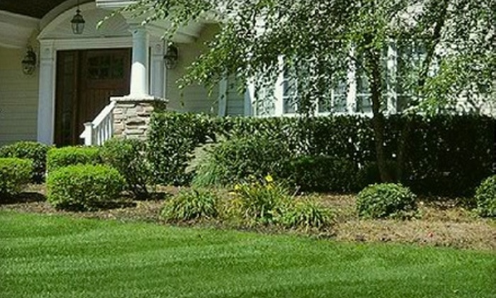 Beaver Tree & Lawn Service - Richmond: $25 for $50 Worth of Lawn-Care Services from Beaver Tree & Lawn Service