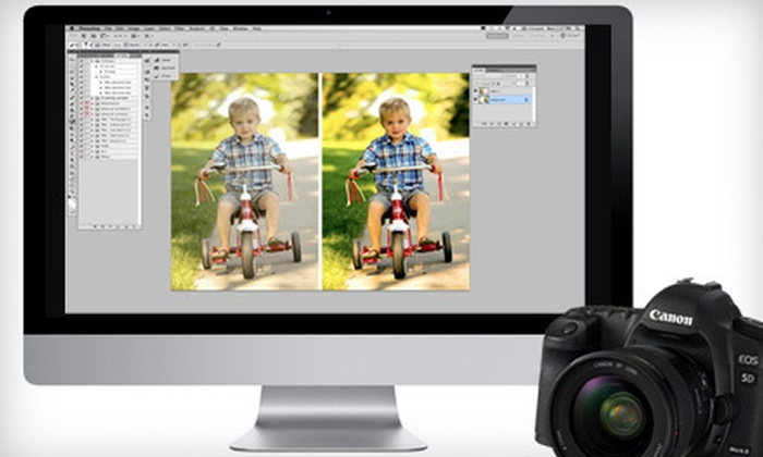 Chimpsy: Two-Hour Beginner, Intermediate, or Advanced Online Photography Classes from Chimpsy (Up to 64% Off)