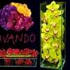 53% Off Flowers from Ovando