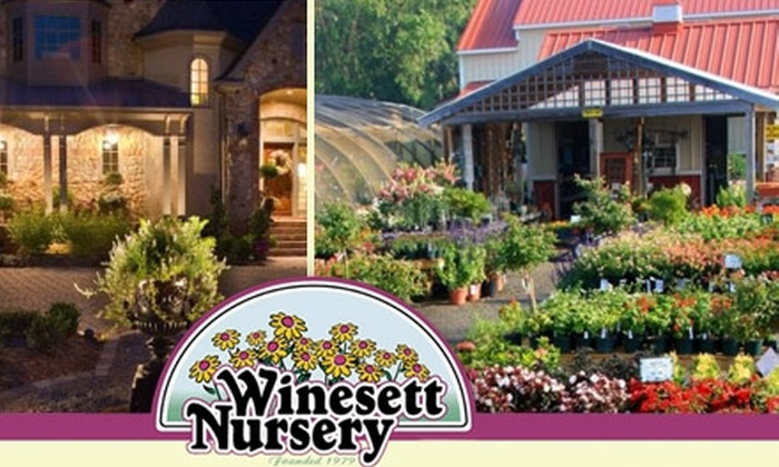 Winesett Nursery - Virginia Beach: $10 for $20 Worth of Plants and Gardening Accessories at Winesett Nursery
