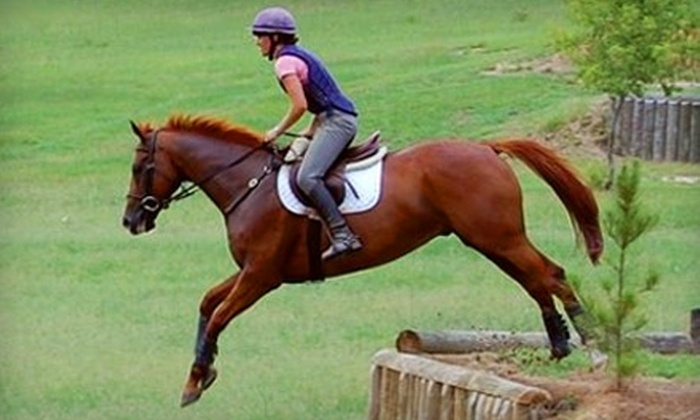 Ash Stables - New Ellenton: $26 for Private One-Hour Horse-Riding Lesson at Ash Stables ($60 Value)