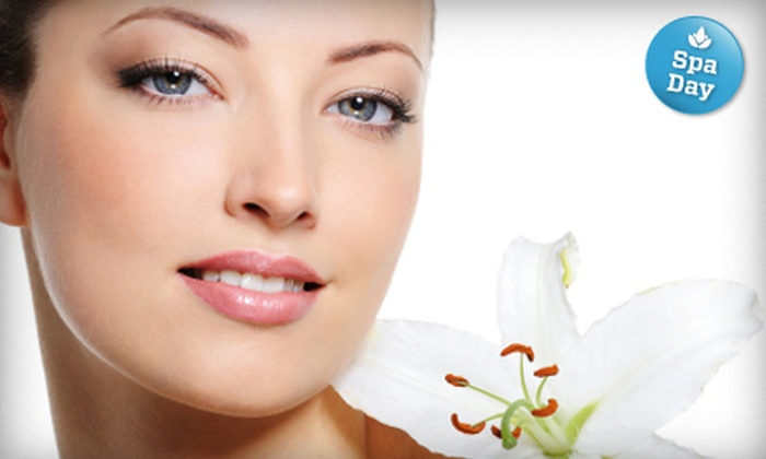 Organelle Salon and Spa - Spring Valley: Nonsurgical Face Lift or Endermologie Cellulite-Reduction Treatment at Organelle Salon and Spa