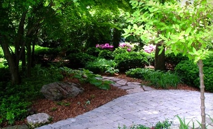 $20 Groupon to Soulliere Landscaping and Garden Center - Soulliere Landscaping and Garden Center in St. Clair Shores