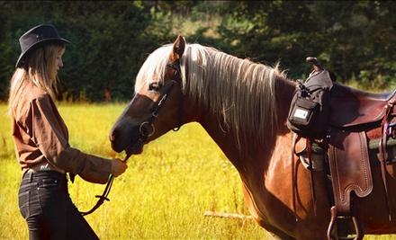 Equine Escapes  - Equine Escapes in Issaquah