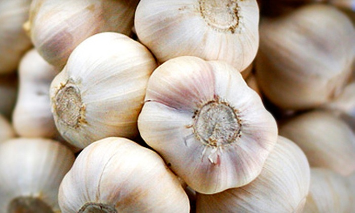 North Union Farmers Market - Buckeye - Shaker: $6 for an Adult Weekend Pass to the Cleveland Garlic Festival on September 10–11 ($12 Value)