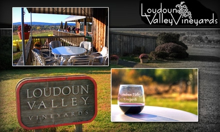 Loudoun Valley Vineyards - Catoctin: $48 for a Wine Tasting for Two and Picnic Lunch at Loudoun Valley Vineyards from Nova Personal Chef ($80 Value). Buy Here for February 13. See Below for Additional Date.
