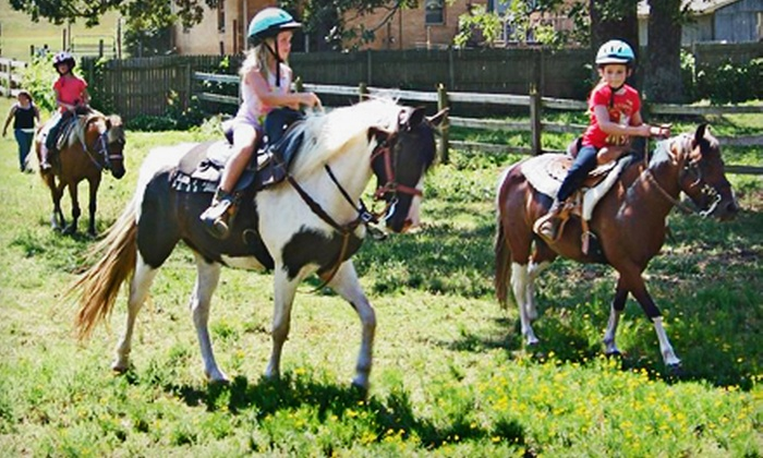 Kristas' Corral - DuQuesne Place: $50 for a One-Hour Private Trail and Arena Ride with Horse or Pony at Kristas' Corral ($100 Value)