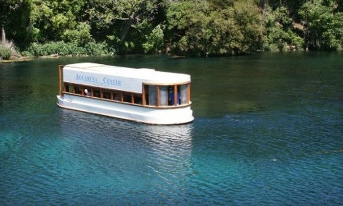 Aquarena Center - San Marcos: Tickets to a Glass-Bottom Boat Tour from Aquarena Center in San Marcos. Two Options Available.